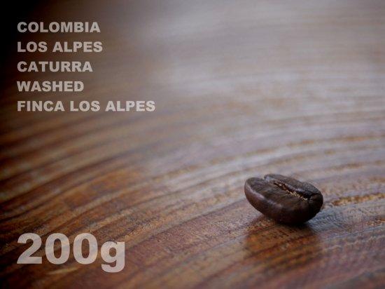コロンビア ロスアルペス カトゥーラ ウォッシュド ロスアルペス農園 【200g】