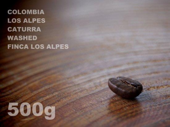 コロンビア ロスアルペス カトゥーラ ウォッシュド ロスアルペス農園 【500g】