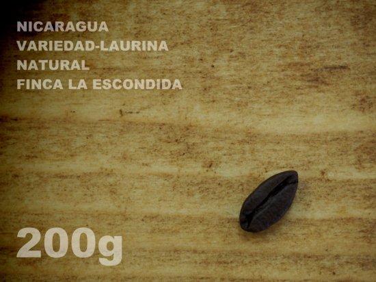 ニカラグア ヴァリエダ-ローリナ ナチュラル エスコンディーダ農園 【200g】