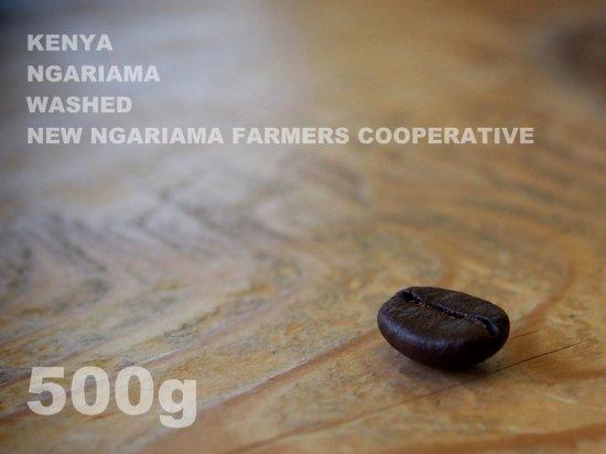 ケニア ンガリアマ ウォッシュド ニュー・ンガリアマ生産者協同組合 【500g】