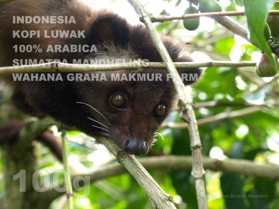 インドネシア コピ・ルアック 100%アラビカ スマトラ マンデリン ワハナ・グラハ・マクムール農園【100g】