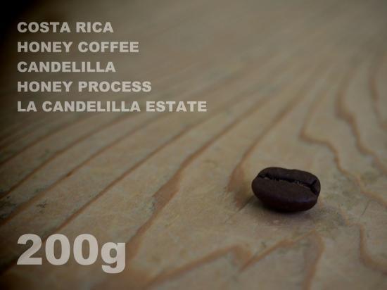 コスタリカ ハニーコーヒー カンデリージャ ハニー・プロセス ラ・カンデリージャ農園 【200g】