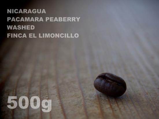 ニカラグア パカマラ ピーベリー ウォッシュド リモンシリョ農園 【500g】