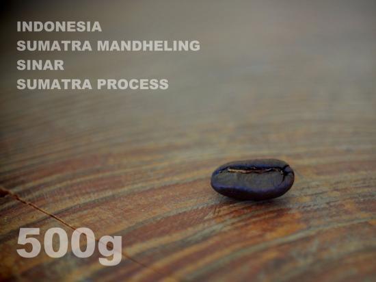 インドネシア スマトラ マンデリン シナール スマトラ・プロセス 【500g】
