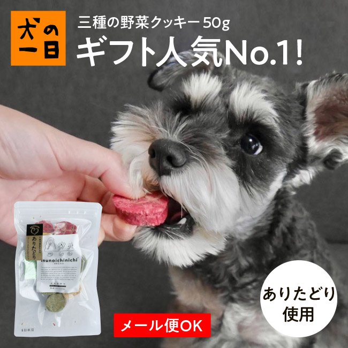 九州産 三種の野菜クッキー50g(犬の一日)