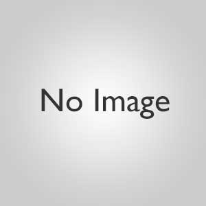 【カテゴリC】ホルミシスブレストバンド + ラドンチップ+ コスモシート(30cmx15cm1枚)