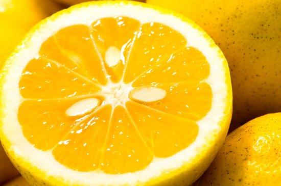 【数量限定】伊豆のニューサマーオレンジ(3kg)