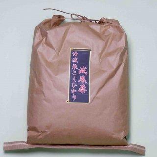 【送料無料】 検査1等 丹波米こしひかり玄米5kg 【特別栽培米】