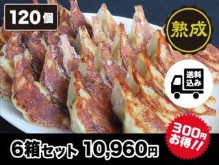熟成豚肉生餃子 6箱セット   送料込み