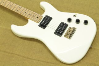 H.S.Anderson Stratocaster Type HH