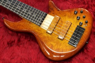 Xotic XB-2 6strings honey burst burl maple top 4.44kg