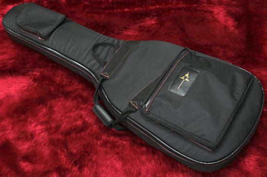 NAZCA PROTECT CASE for Bass