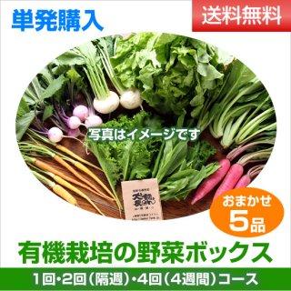 単発購入 有機野菜5品ボックス