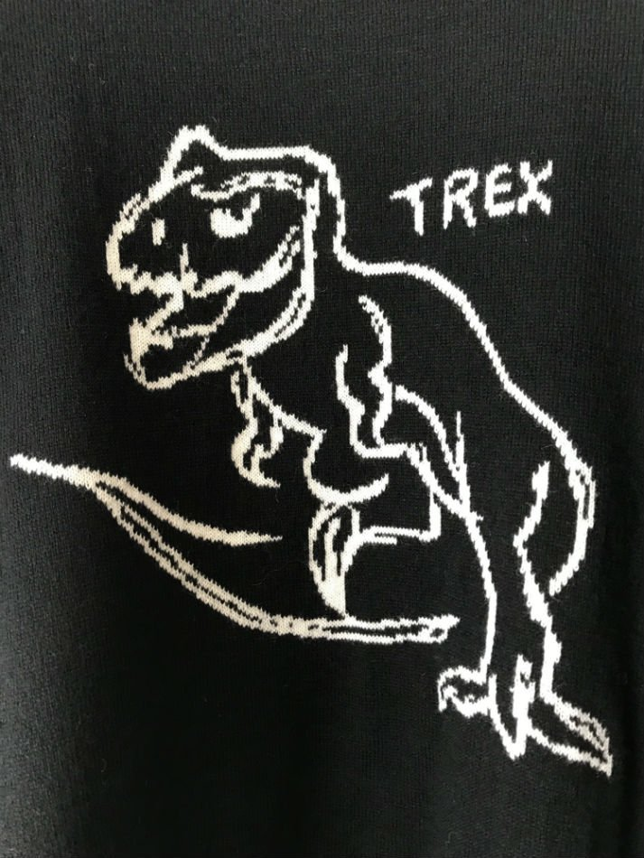 NEON SIGN<br />T-rex Sweater BLK<img class='new_mark_img2' src='//img.shop-pro.jp/img/new/icons47.gif' style='border:none;display:inline;margin:0px;padding:0px;width:auto;' />