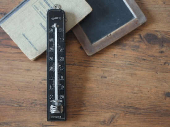 フランス ナポレオン3世時代  黒の温度計