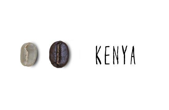 ケニア キリマヒガ AB/200g