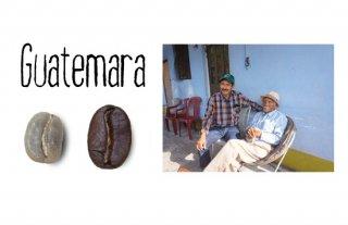 グアテマラ エスペランサ ベガ/200g