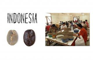 インドネシア マンデリン ビンタンリマ /200g