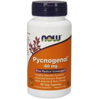 Pycnogenol ピクノジェノール 60mg(フランス海岸松樹皮エキス/アセロラ&ルチン配合)50粒 [071-03277/A1C05]