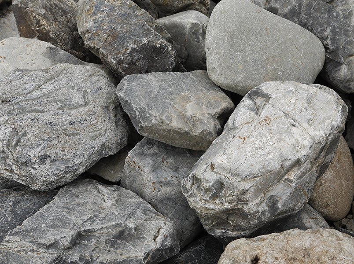 揖斐川石 飛石