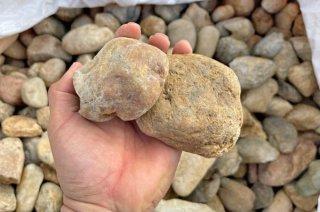 淡路ごろた石(100-200mm)