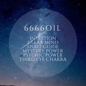 【66個限定】6666OIL