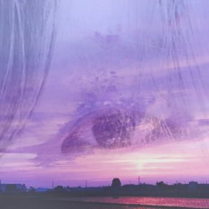 美の覚醒ブレンド  〜美龍の導き、そして喜び〜【5/28までの限定販売】