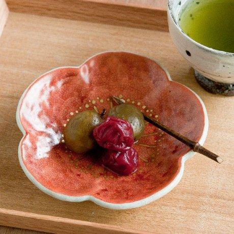 紅梅4寸皿