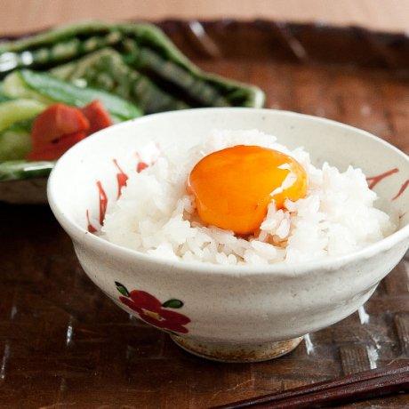 めで鯛飯碗(小)