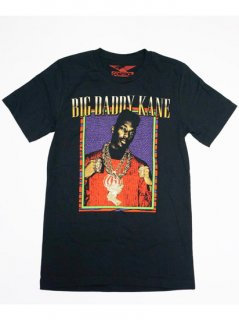 BIG DADDY KANE / HALF STEPPIN