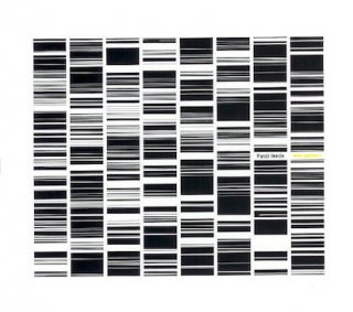 RYOJI IKEDA (池田亮司) / test pattern CD