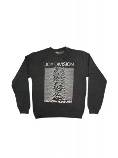 JOY DIVISION UNKNOWN PLEASURES 1020