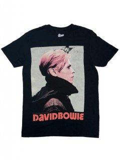 DAVID BOWIE / LOW PORTRAIT