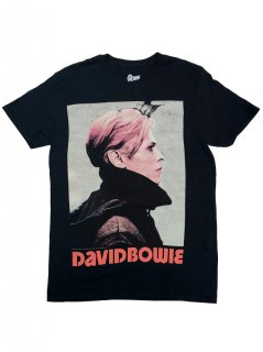 DAVID BOWIE / LOW PORTRAIT(2XL)