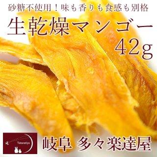 生乾燥マンゴー45g 岐阜 多々楽達屋(たたらちや)砂糖不使用のドライフルーツ【常温・冷蔵可】