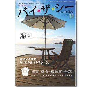 バイザ☆シー No.33/2012