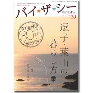 バイザ☆シー No.30/2012
