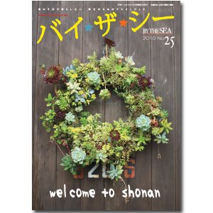 バイザ☆シー No.25/2010