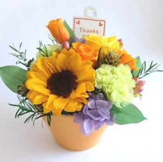 プリザーブドフラワー[母の日ヒマワリ]元気になれる贈り物/お値打ち価格