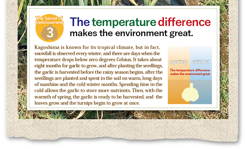 the temperature difference makes the environment great