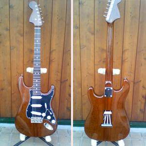 All Rosewood Reverse Head Stratocaster