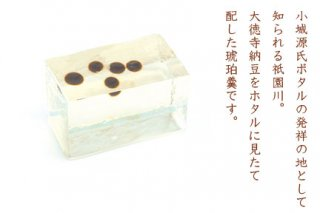 【六月】 祇園川