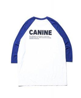 ROTTWEILER CANINE 3/4 Tee