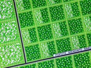 【カンガ】 グリーン×イエローグリーン ペイズリー 東アフリカ民族布
