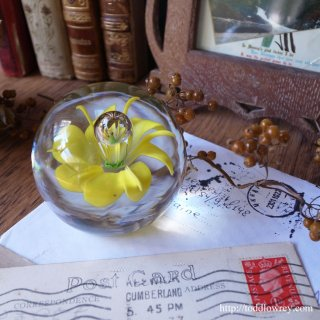 Vintage Glass Paper Weight Frog & Flower Inside