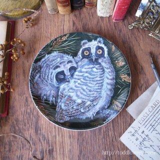 オレンジの虹彩をもつ夜の鳥 / Vintage Wedgewood The Baby Owls Plate