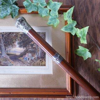 逆境に打ち勝って栄光の星へ / Antique Walking Stick