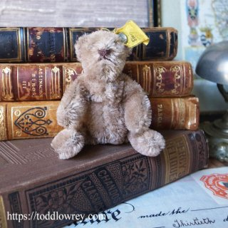半世紀前のドイツから来たベア / Vintage Steiff Baby Teddy Bear