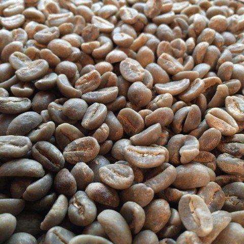 東チモール産直生豆 有機JAS マウベシ産限定-1kg