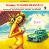 Pelotan - SUMMER MEANS FUN